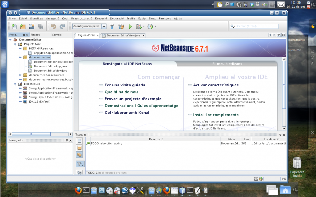 NetBeans671_cat